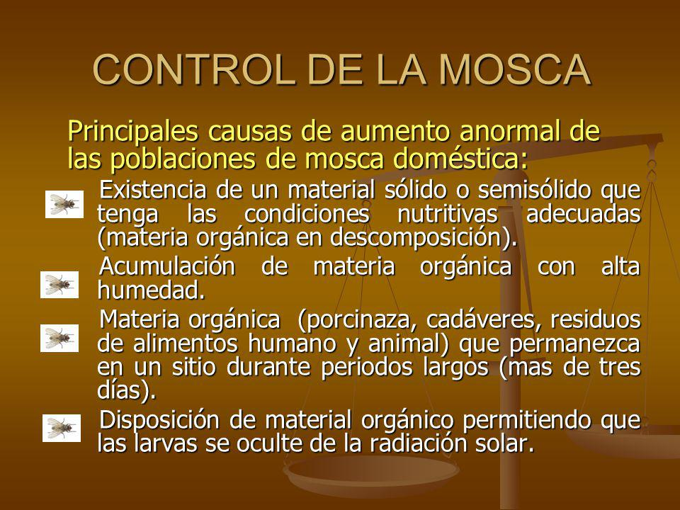 CONTROL DE LA MOSCA Principales causas de aumento anormal de las poblaciones de mosca doméstica: