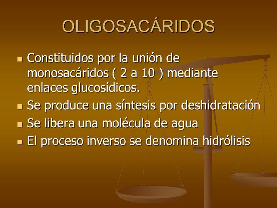 OLIGOSACÁRIDOS Constituidos por la unión de monosacáridos ( 2 a 10 ) mediante enlaces glucosídicos.