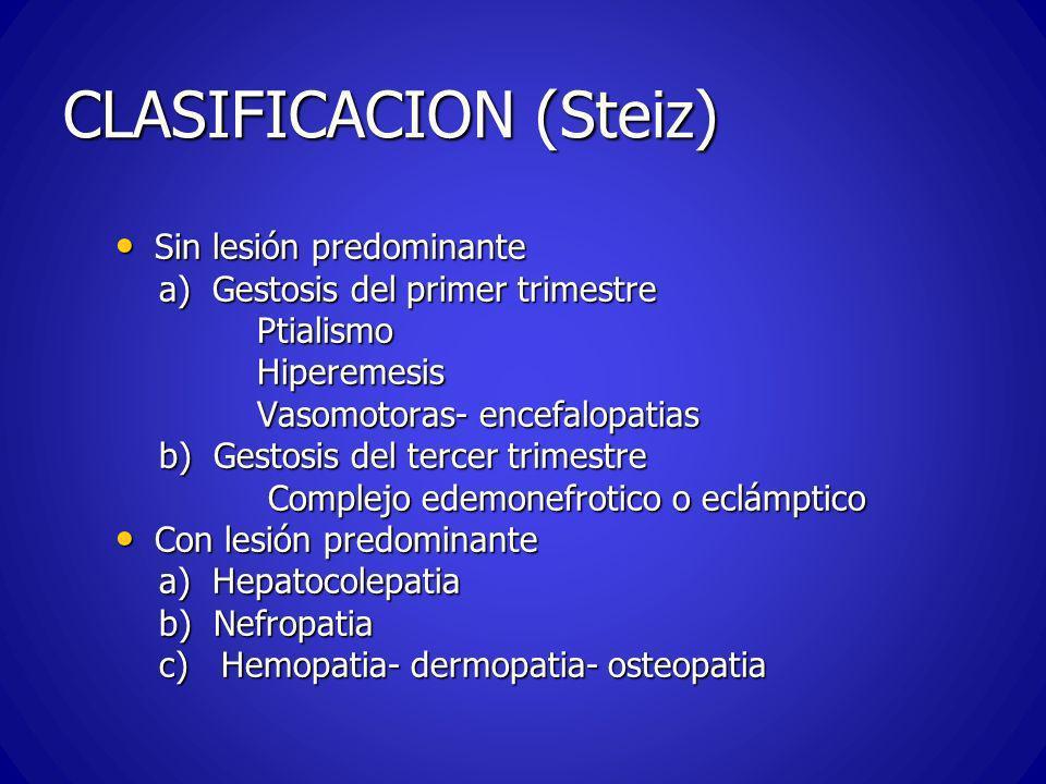 CLASIFICACION (Steiz)