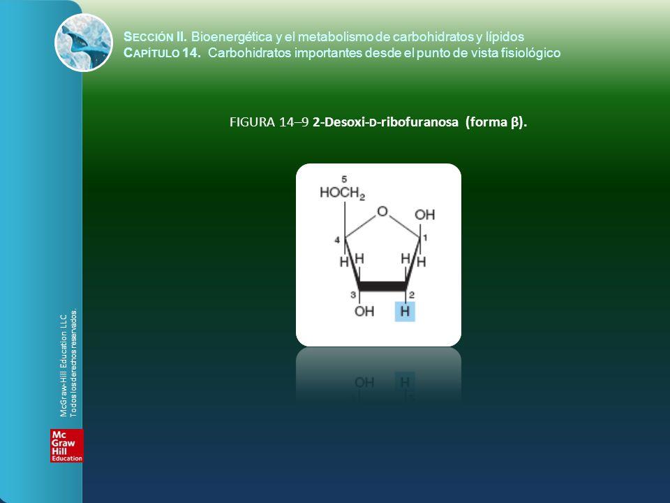 FIGURA 14–9 2-Desoxi-d-ribofuranosa (forma β).
