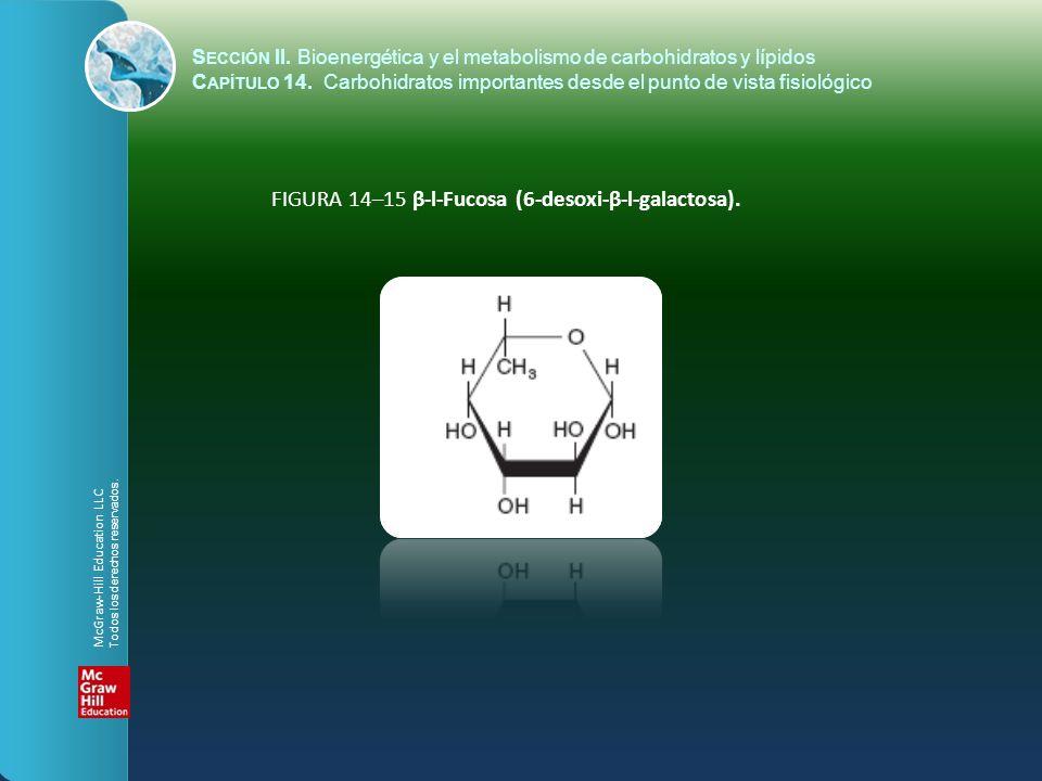 FIGURA 14–15 β-l-Fucosa (6-desoxi-β-l-galactosa).