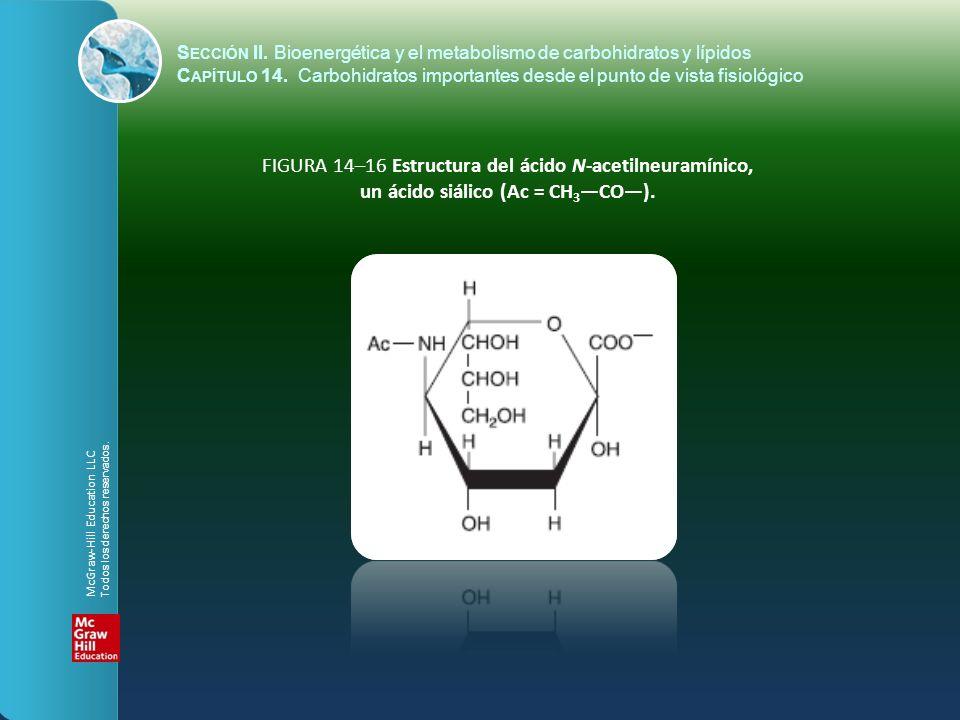 un ácido siálico (Ac = CH3—CO—).