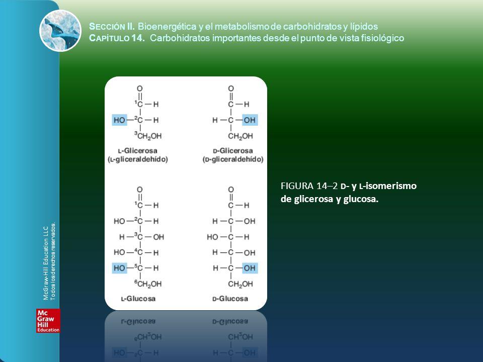 FIGURA 14–2 d- y l-isomerismo de glicerosa y glucosa.