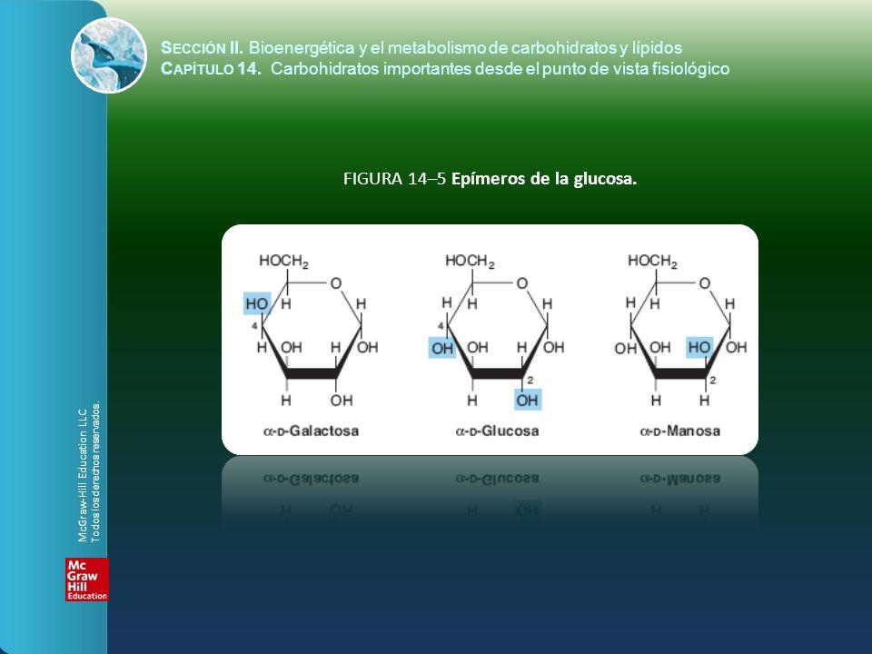 FIGURA 14–5 Epímeros de la glucosa.