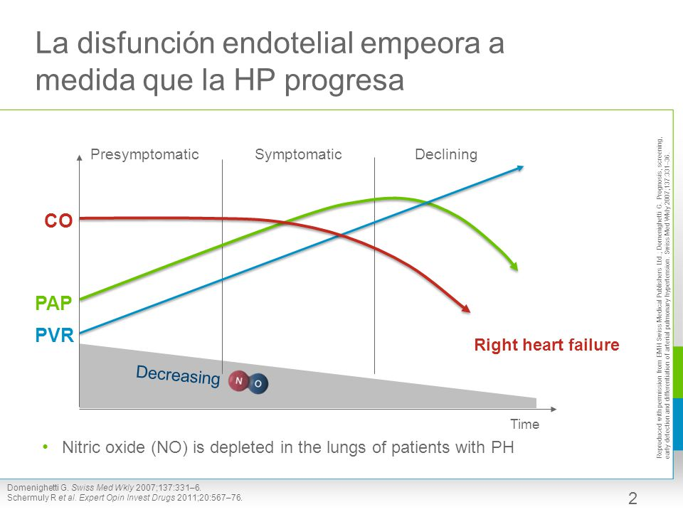 La disfunción endotelial empeora a medida que la HP progresa