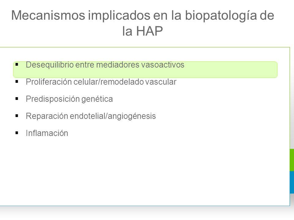 Mecanismos implicados en la biopatología de la HAP