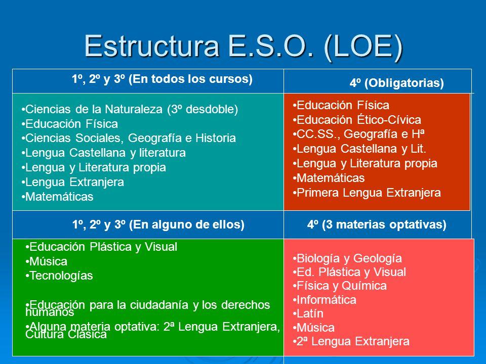 Estructura E.S.O. (LOE) 1º, 2º y 3º (En todos los cursos)
