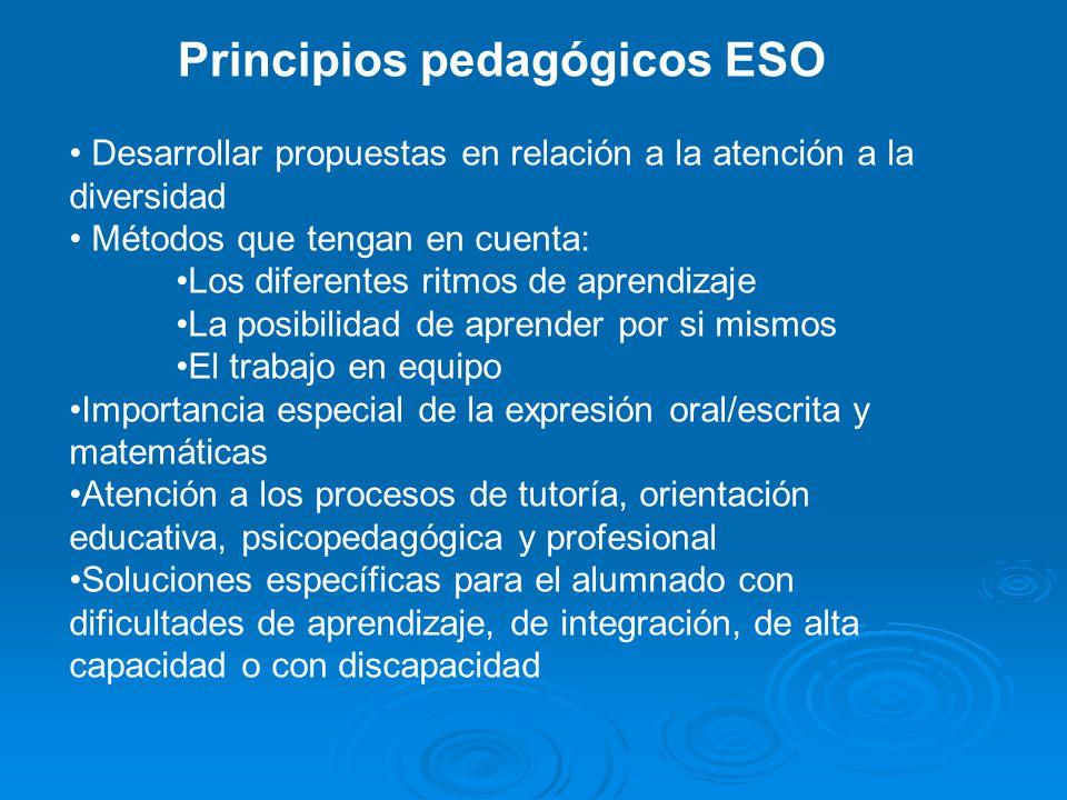 Principios pedagógicos ESO