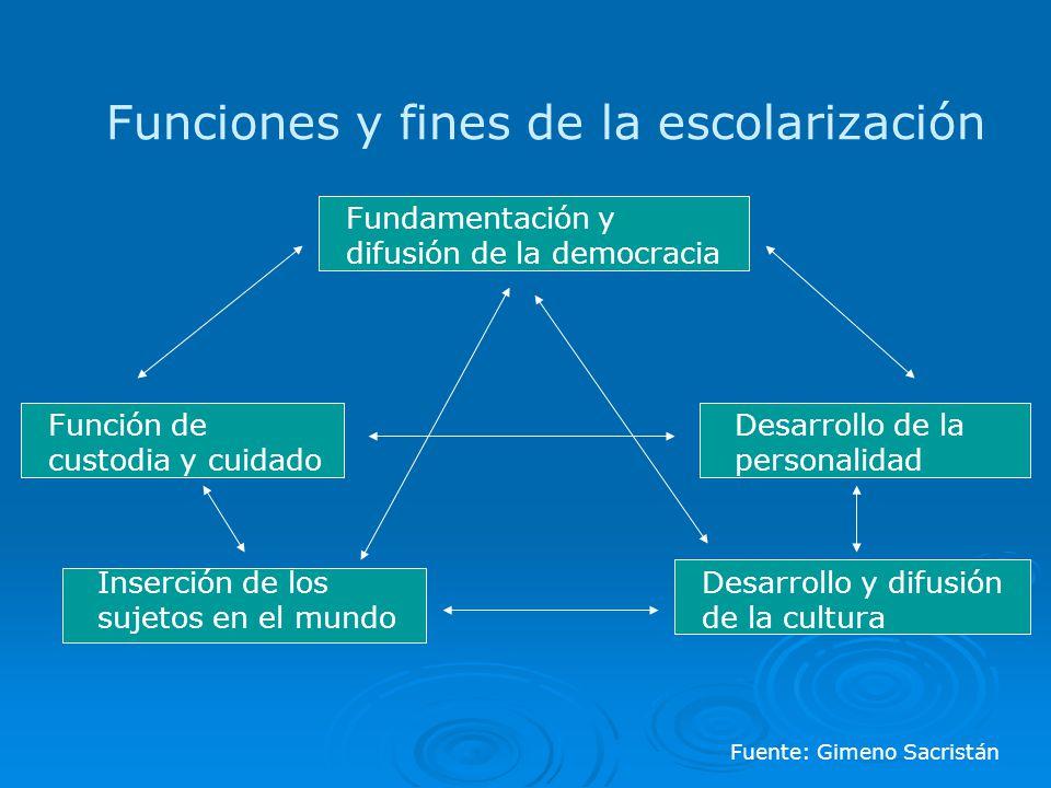 Funciones y fines de la escolarización