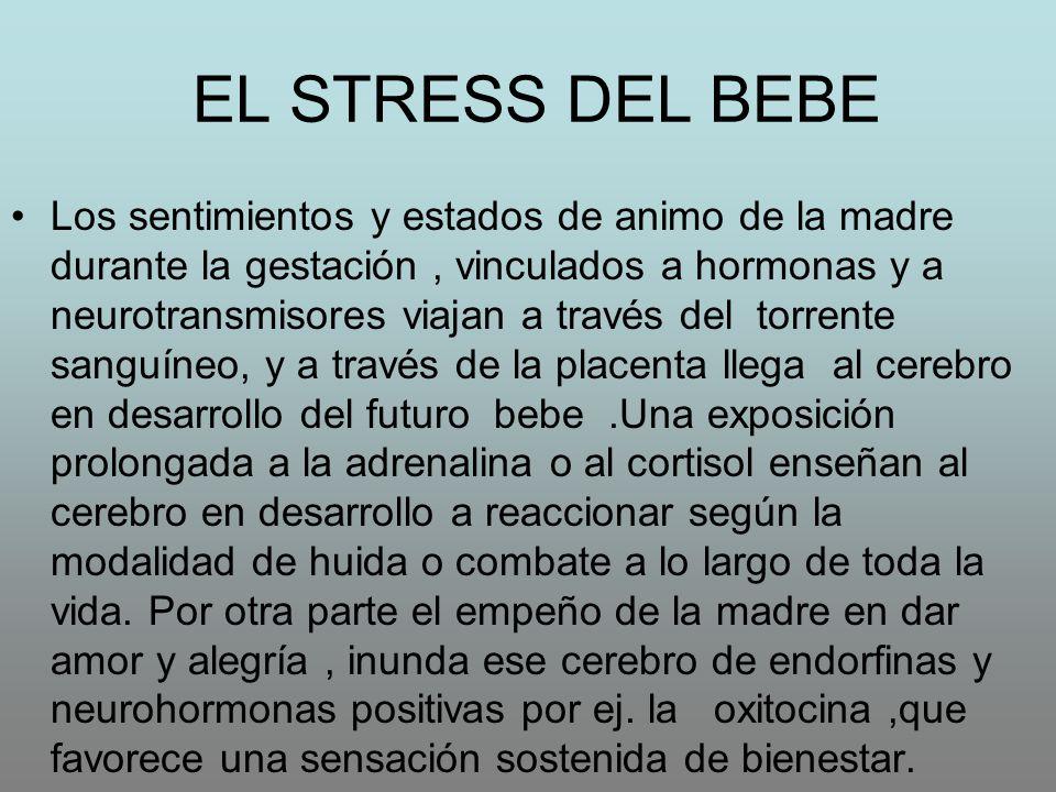 EL STRESS DEL BEBE