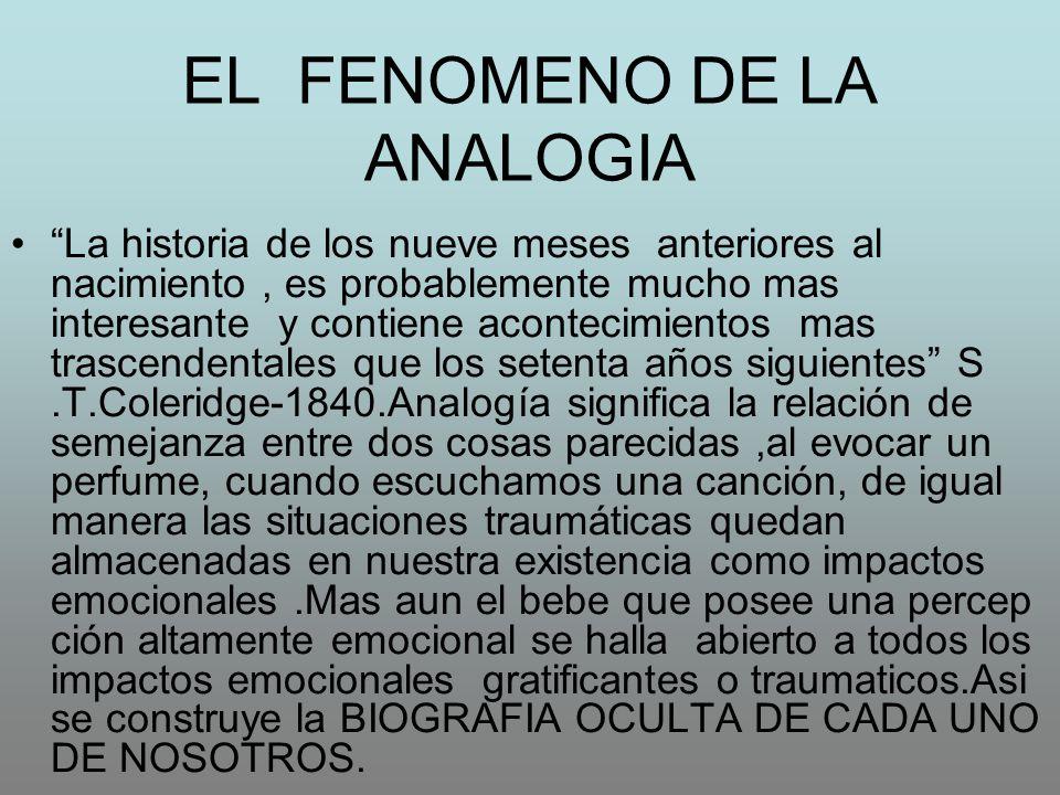 EL FENOMENO DE LA ANALOGIA