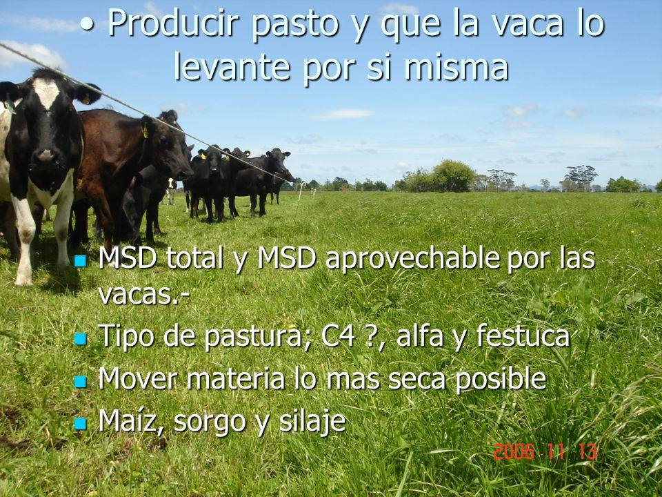 Producir pasto y que la vaca lo levante por si misma