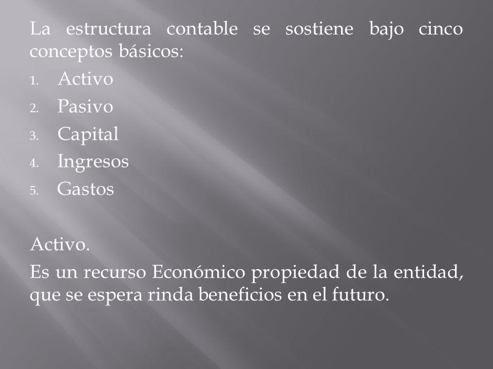 La estructura contable se sostiene bajo cinco conceptos básicos: