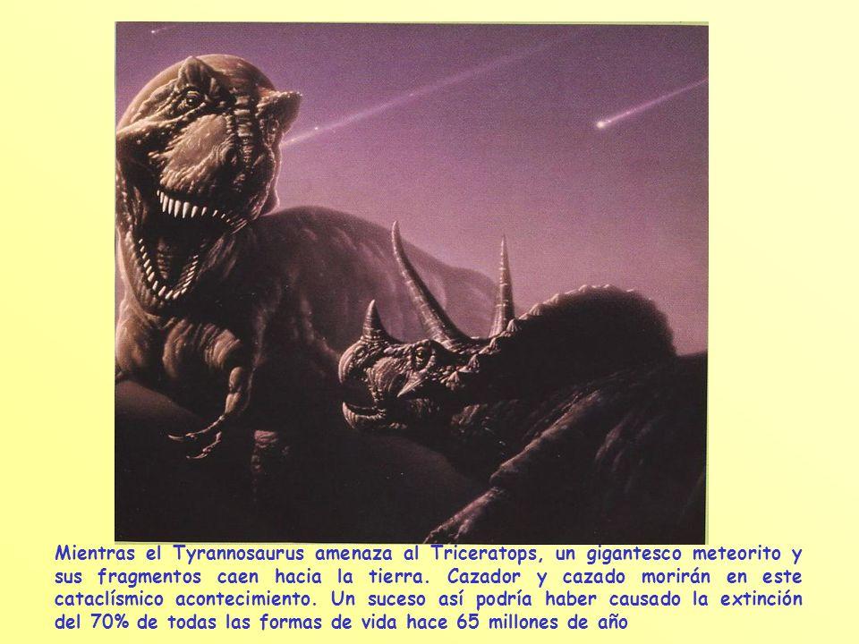 Mientras el Tyrannosaurus amenaza al Triceratops, un gigantesco meteorito y sus fragmentos caen hacia la tierra.