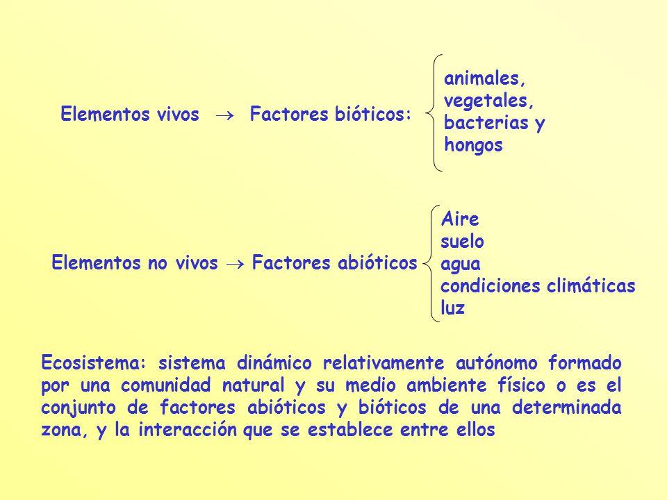 Elementos vivos  Factores bióticos: