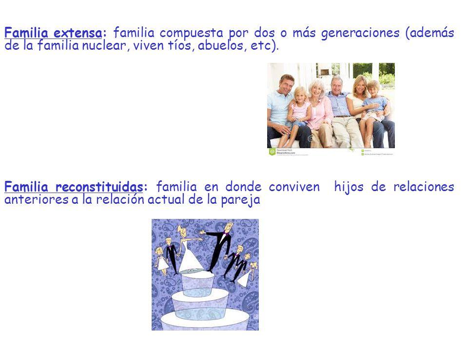 Familia extensa: familia compuesta por dos o más generaciones (además de la familia nuclear, viven tíos, abuelos, etc).