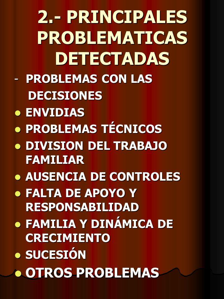 2.- PRINCIPALES PROBLEMATICAS DETECTADAS