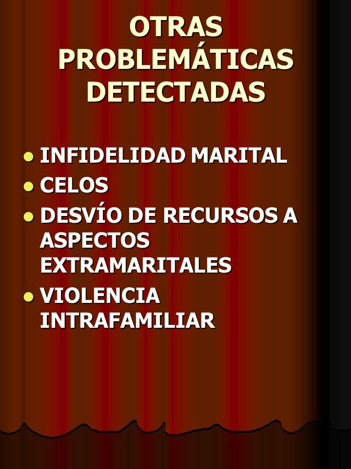 OTRAS PROBLEMÁTICAS DETECTADAS