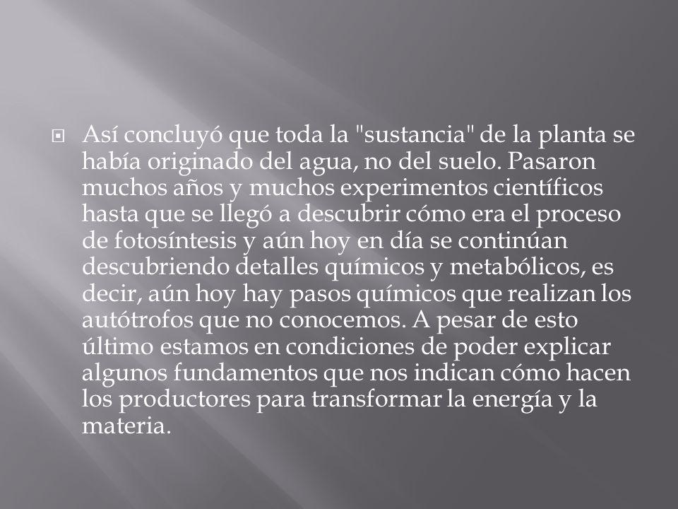 Así concluyó que toda la sustancia de la planta se había originado del agua, no del suelo.