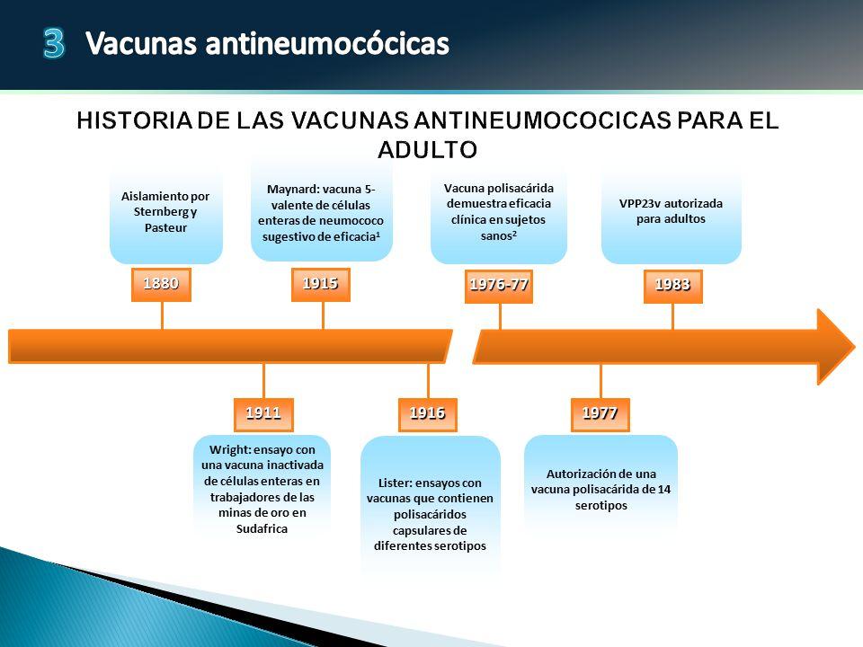 Historia de las vacunas antineumococicas para el adulto