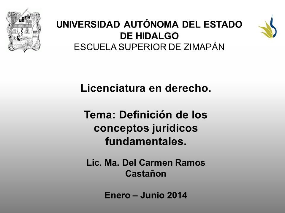 Licenciatura en derecho.