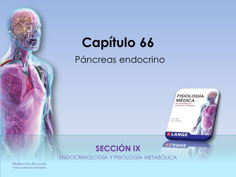 Capítulo 66 Páncreas endocrino
