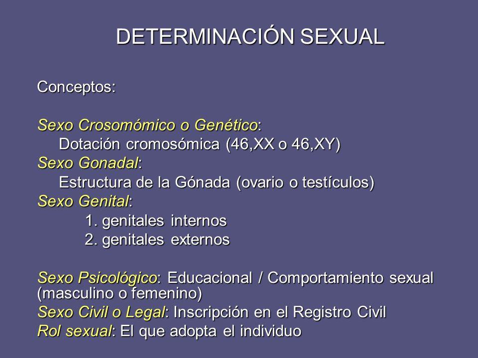 DETERMINACIÓN SEXUAL Conceptos: Sexo Crosomómico o Genético: