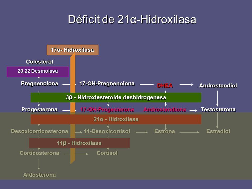 Déficit de 21α-Hidroxilasa