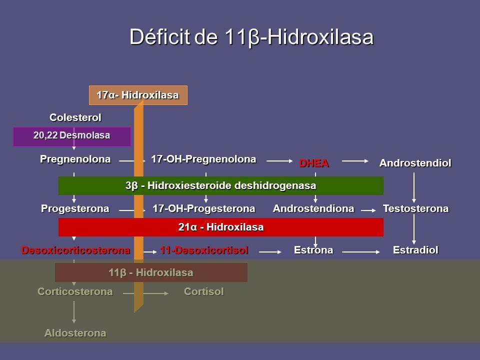 Déficit de 11β-Hidroxilasa