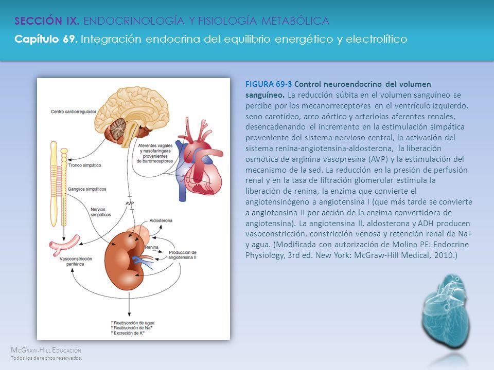 FIGURA 69-3 Control neuroendocrino del volumen sanguíneo