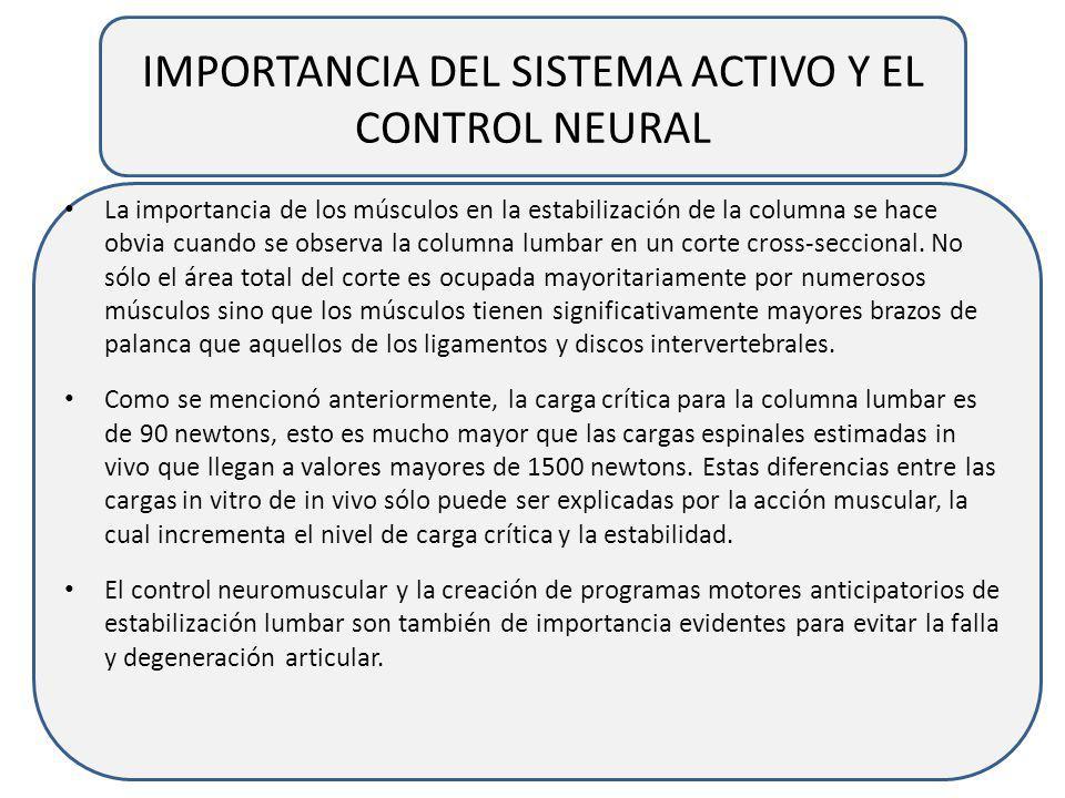 IMPORTANCIA DEL SISTEMA ACTIVO Y EL CONTROL NEURAL