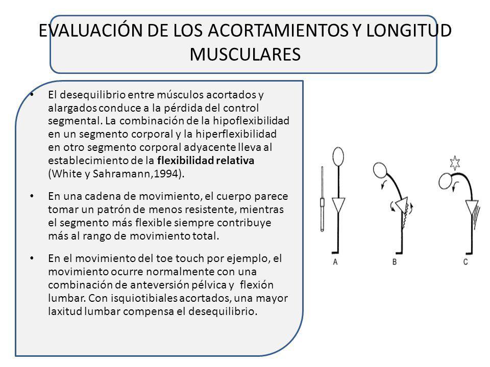 EVALUACIÓN DE LOS ACORTAMIENTOS Y LONGITUD MUSCULARES