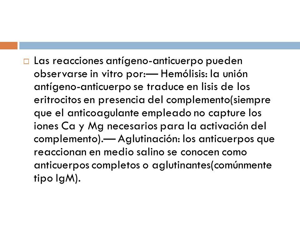Las reacciones antígeno-anticuerpo pueden observarse in vitro por:— Hemólisis: la unión antígeno-anticuerpo se traduce en lisis de los eritrocitos en presencia del complemento(siempre que el anticoagulante empleado no capture los iones Ca y Mg necesarios para la activación del complemento).— Aglutinación: los anticuerpos que reaccionan en medio salino se conocen como anticuerpos completos o aglutinantes(comúnmente tipo IgM).