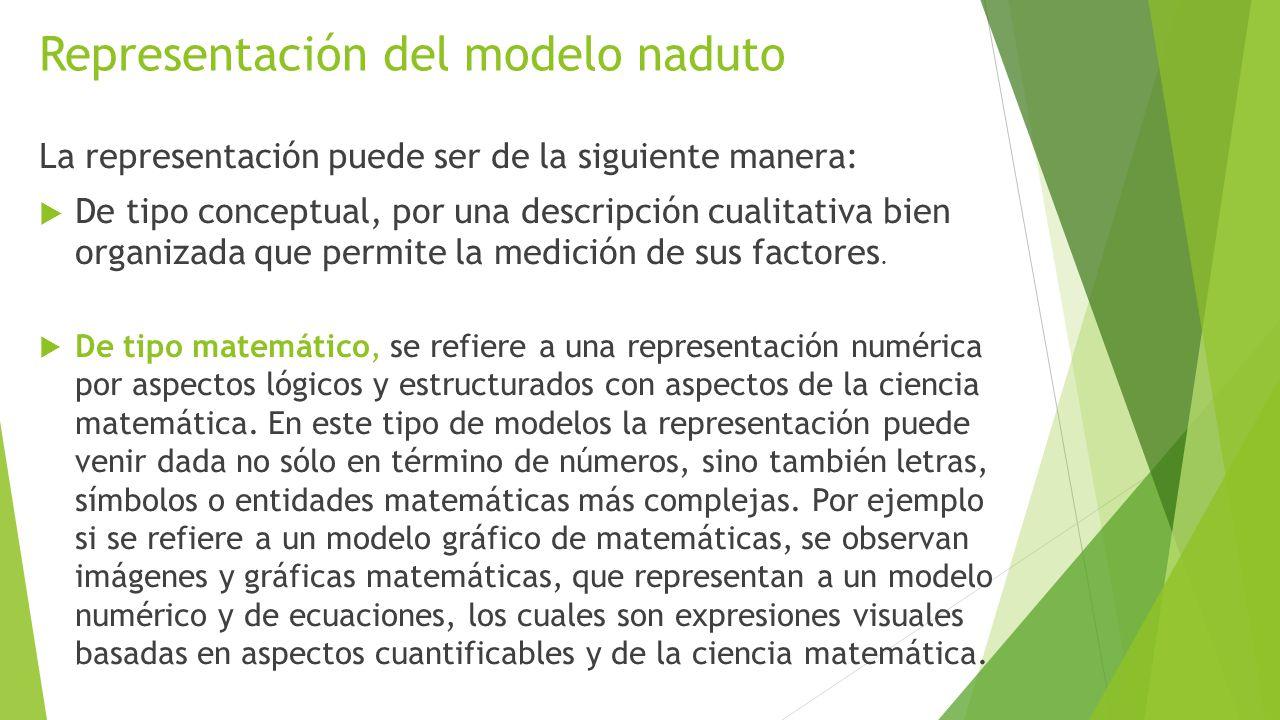Representación del modelo naduto