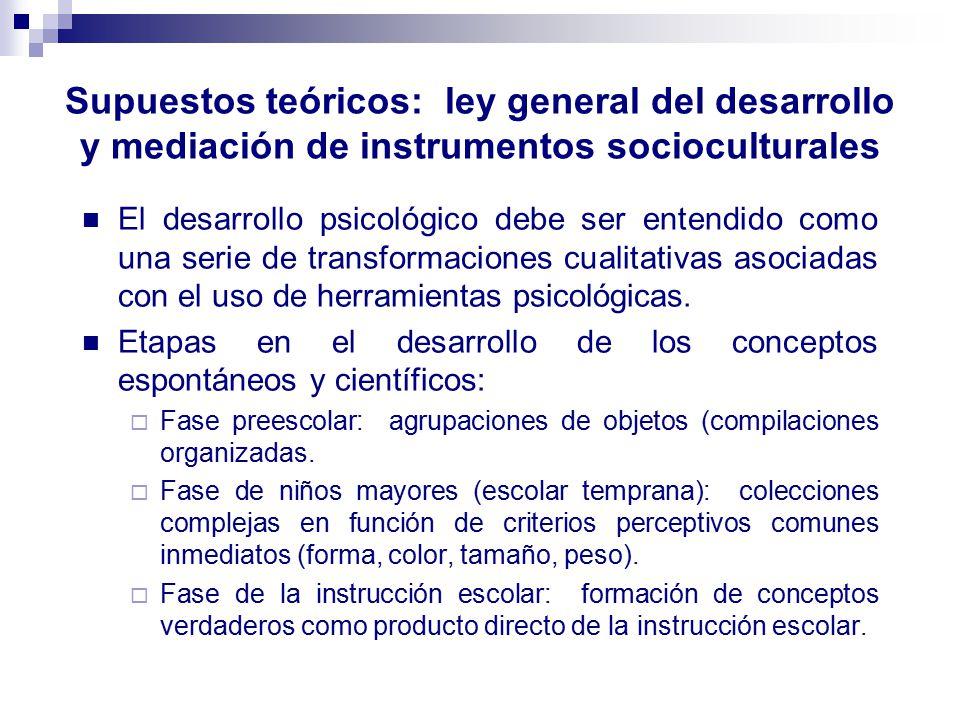 Supuestos teóricos: ley general del desarrollo y mediación de instrumentos socioculturales