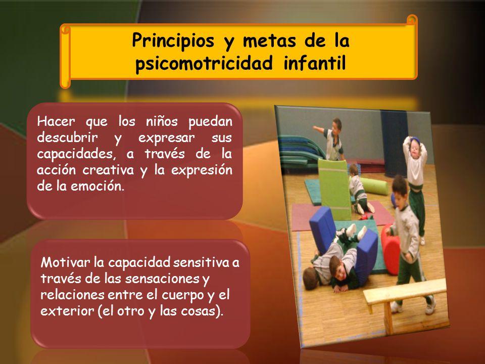 Principios y metas de la psicomotricidad infantil