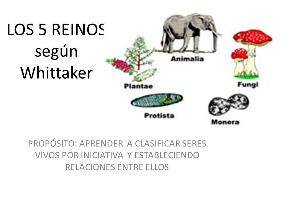 LOS 5 REINOS según Whittaker
