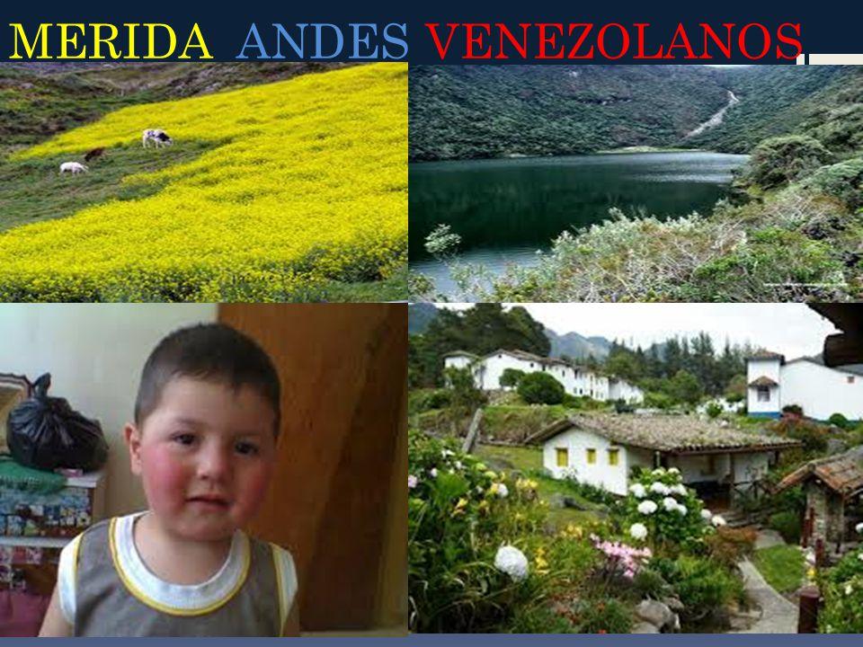 MERIDA ANDES VENEZOLANOS