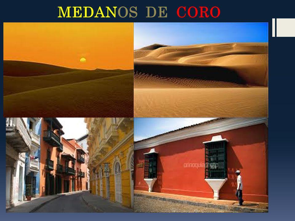 MEDANOS DE CORO