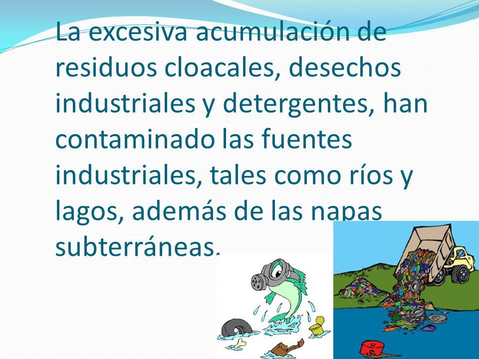 La excesiva acumulación de residuos cloacales, desechos industriales y detergentes, han contaminado las fuentes industriales, tales como ríos y lagos, además de las napas subterráneas.
