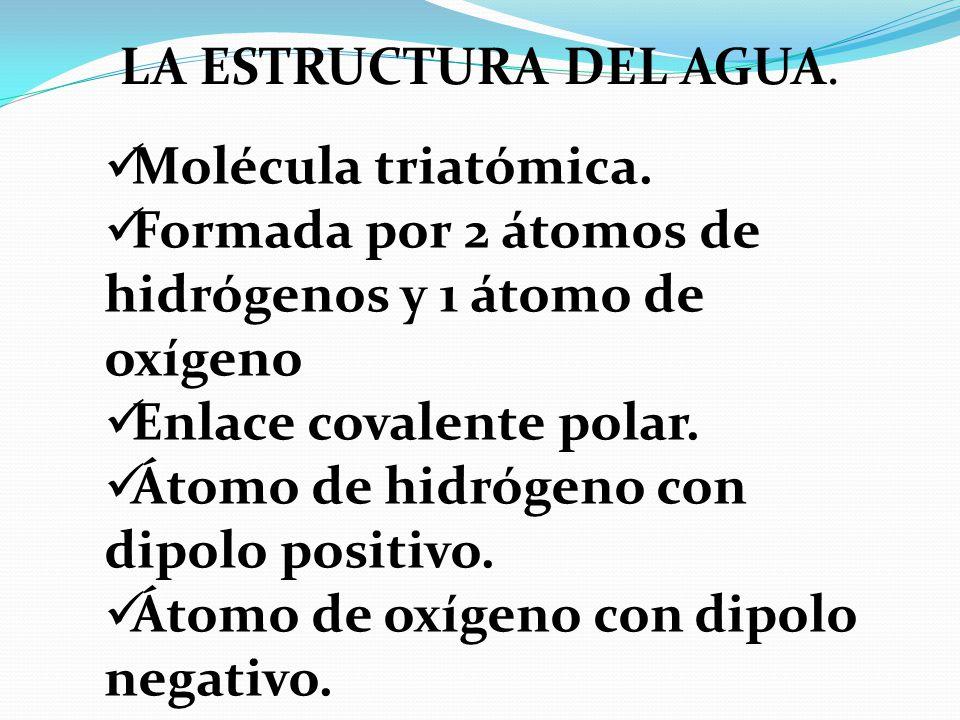LA ESTRUCTURA DEL AGUA. Molécula triatómica. Formada por 2 átomos de hidrógenos y 1 átomo de oxígeno.