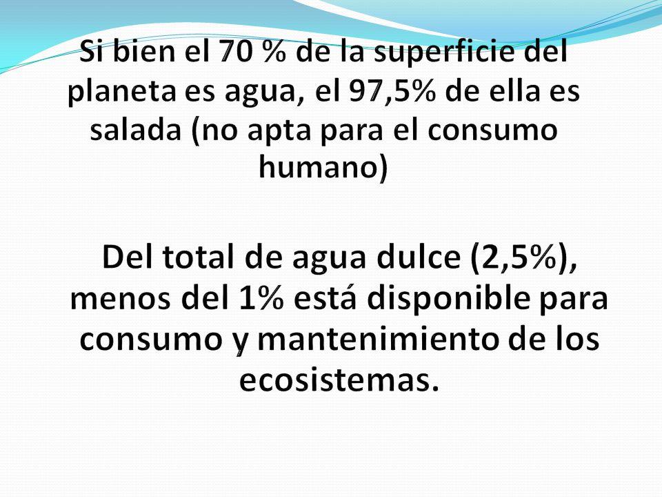 Si bien el 70 % de la superficie del planeta es agua, el 97,5% de ella es salada (no apta para el consumo humano)