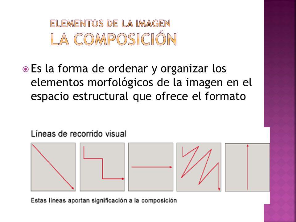 Elementos de la imagen La composición