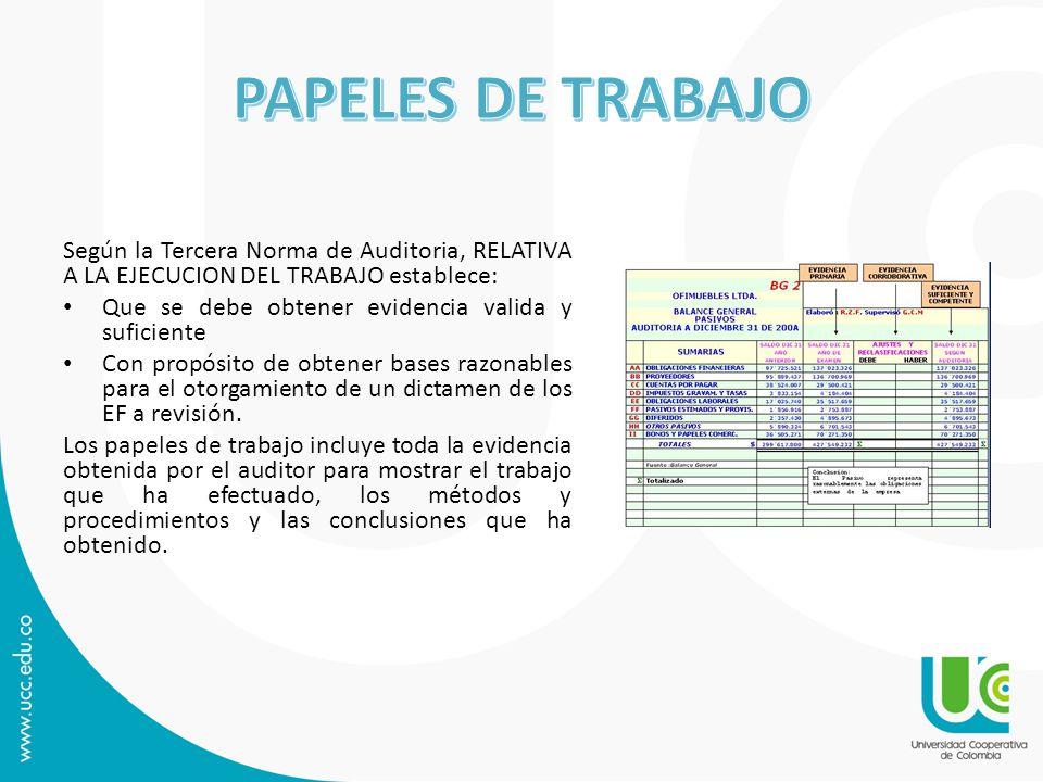 PAPELES DE TRABAJO Según la Tercera Norma de Auditoria, RELATIVA A LA EJECUCION DEL TRABAJO establece: