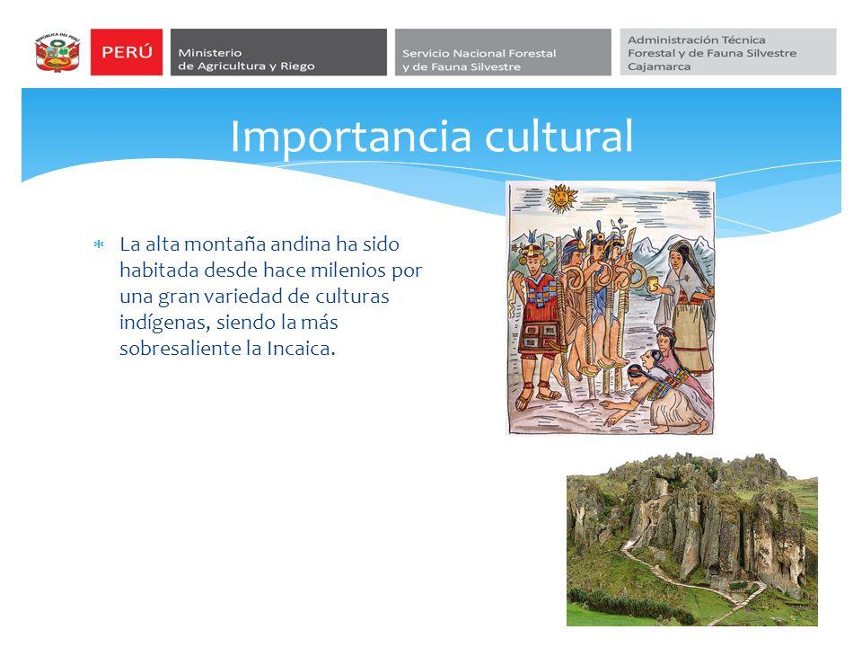 Importancia cultural