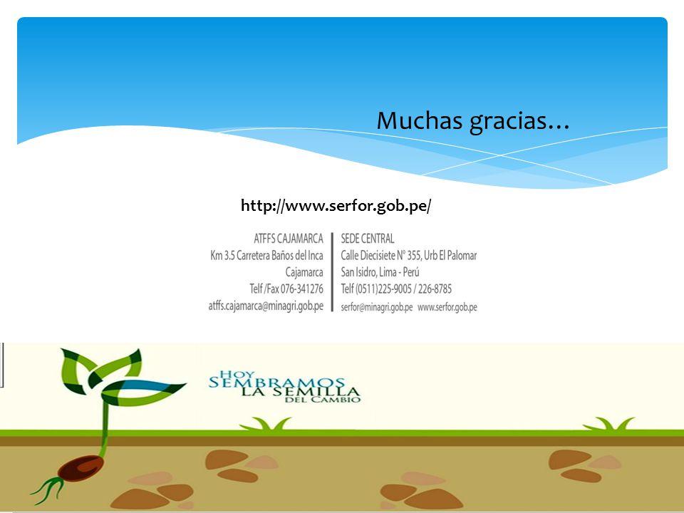 Muchas gracias… http://www.serfor.gob.pe/