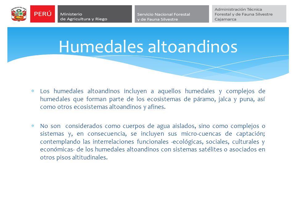 Humedales altoandinos