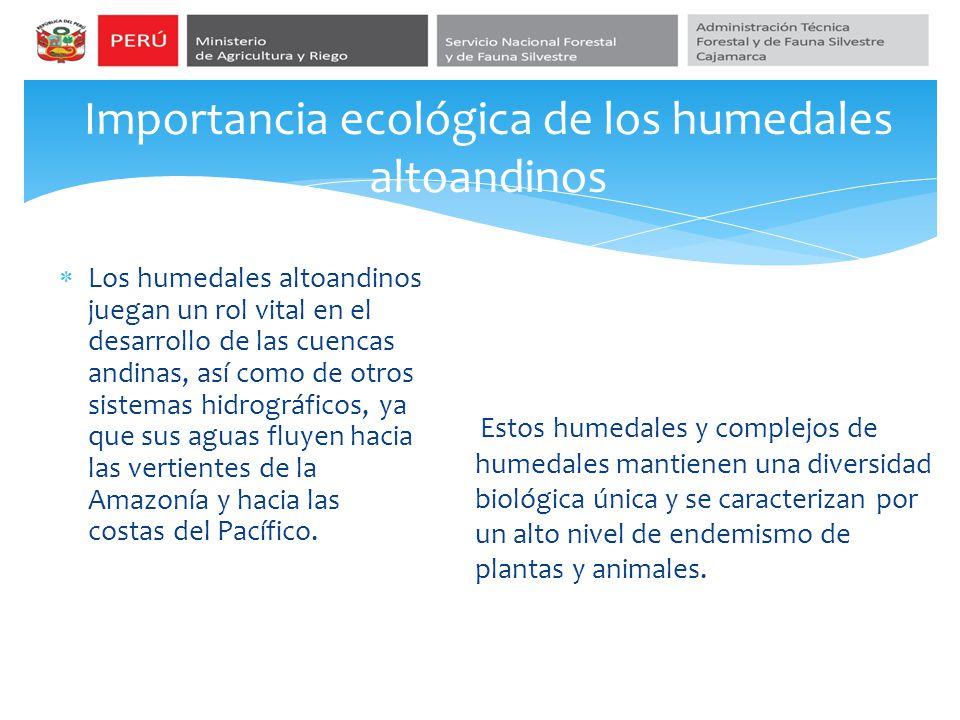 Importancia ecológica de los humedales altoandinos