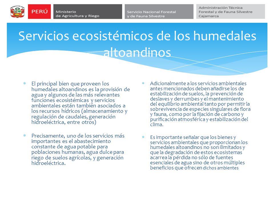 Servicios ecosistémicos de los humedales altoandinos