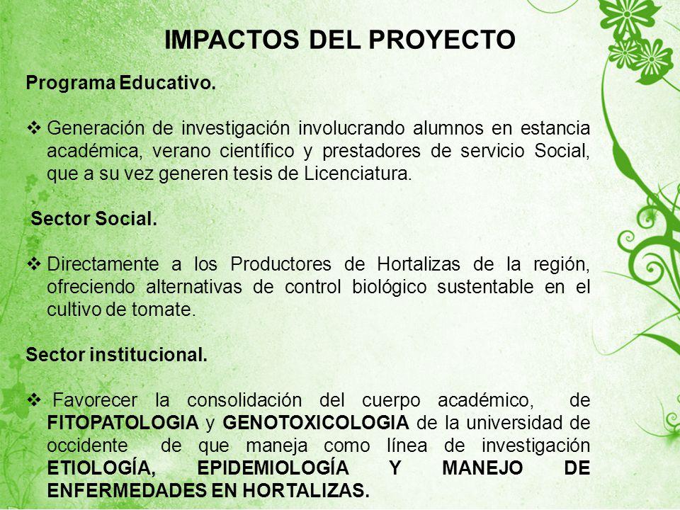 IMPACTOS DEL PROYECTO Programa Educativo.